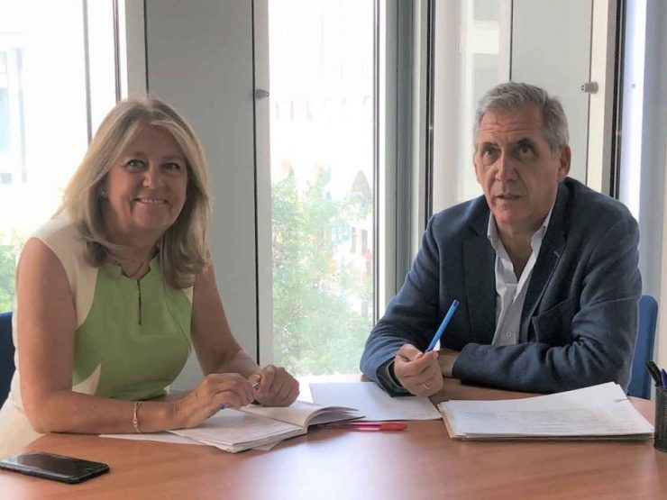 MARBELLA – City Council and Board encourage to advance the processing of planning data in Marbella