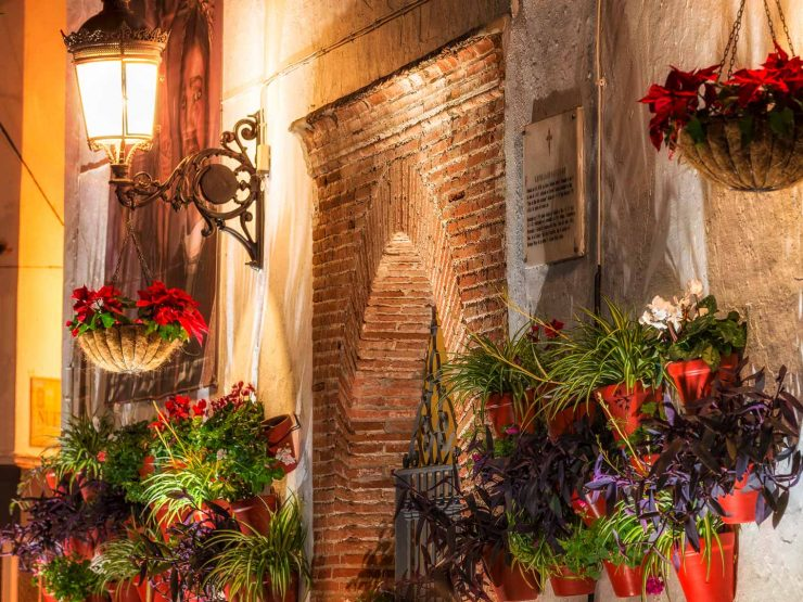 MARBELLA – LIFESTYLE – Christmas in Marbella